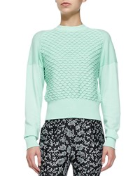 3.1 Phillip Lim Mixed Knit Cotton Cashmere Sweater Women's Mint