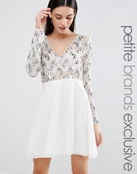 Maya Petite Long Sleeve Plunge Front Embellished Skater Dress Cream