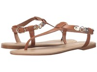 Massimo Matteo Thong Buckle Ankle Strap Noce Women's Sandals Multi