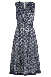 Damsel In A Dress Lace Dress Navy