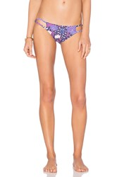 Stone Fox Swim Laguna Bottom Purple