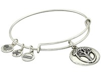 Alex And Ani Unexpected Miracles Ii Charm Bangle Rafaelian Silver Bracelet