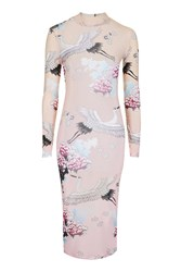 Jaded London Ombre Oriental Mesh Midi By Pink