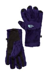 The North Face Denali Thermal Etip Gloves Purple