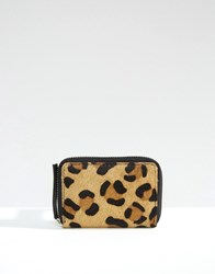 Asos Leather And Leopard Faux Pony Coin Purse Multi