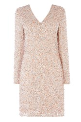 Coast Bella Sequin Dress Blush