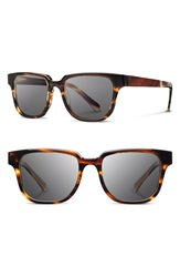 Shwood 'Prescott' 52Mm Acetate And Wood Sunglasses Tortoise Grey