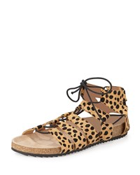 Pascal Animal Print Lace Up Sandal Cheetah Loeffler Randall