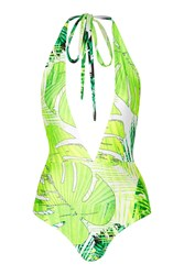 Tropical Printed Plunge Swimsuit By Rare Green