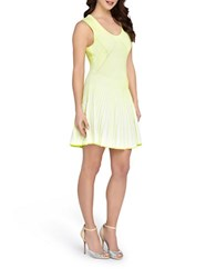 Catherine Malandrino Striped Fit And Flare Dress Neon Yellow