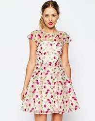 Asos Salon Pretty Floral Embroidered Mini Skater Dress Pink