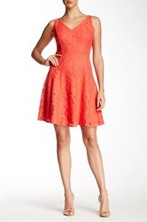 Maggy London Rose Lace Fit And Flare Dress Red