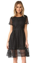 Cupcakes And Cashmere Mori Lace Fit Flare Dress Black