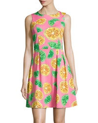 Jb By Julie Brown Fruit Print Sleeveless Fit And Flare Dress Clementine
