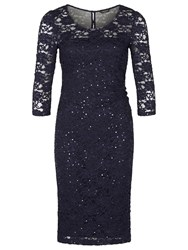 Precis Petite Sheer Yoke Lace Dress Sapphire