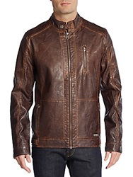 Buffalo David Bitton Coated Moto Jacket Mocha Brown