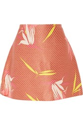 Marni Printed Raffia Mini Skirt Antique Rose