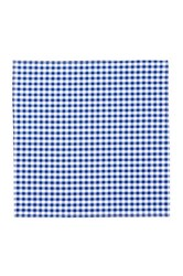 14Th And Union Gingham Pocket Square Blue