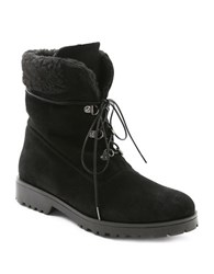 Andre Assous Muse Lace Up Ankle Boots Black