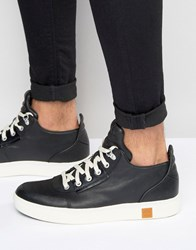 Timberland Amherst Trainers Black