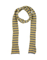 Daniele Alessandrini Oblong Scarves Yellow