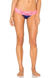 Beach Bunny Lady Lace Bottom Navy