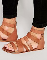 Asos Gladiator Sandals In Tan Leather Tan