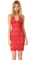 Nightcap X Carisa Rene Classic Lace Slip Dress Scarlett