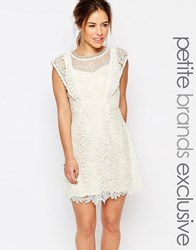 Little Mistress Petite All Over Lace Skater Mini Dress With Frill Sleeve Detail Cream