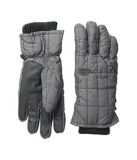 The North Face Metropolis Etip Gloves Tnf Medium Grey Heather Extreme Cold Weather Gloves Gray