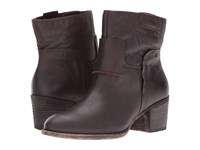 Otbt Urban Chocolate Women's Pull On Boots Brown