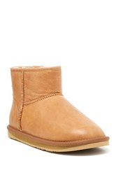 Australia Luxe Collective Cosy X Short Genuine Sheepskin Boot Brown