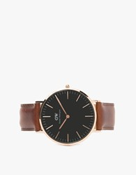 Daniel Wellington Classic Black St. Mawes In Rose Gold Rose Gold Brown