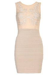 Chase 7 Bodycon Lace Bodice Dress Beige