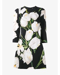 Dolce And Gabbana Tulip Print Mini Dress Black White Green