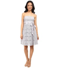 Jessica Simpson Lace Fit And Flare W Ribbon Detail Silver Grey Women's Dress