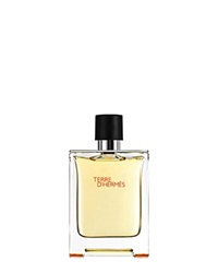 Hermes Terre D'hermes Eau De Toilette Natural Spray 1.6 Oz. No Color