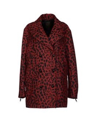 Diesel Black Gold Coats Red