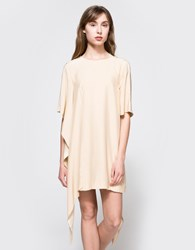 C Meo Collective Disposition Silk Dress In Tan