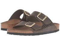 Birkenstock Arizona Shiny Snake Olive Women's Sandals Brown