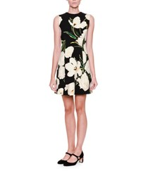 Dolce And Gabbana Graphic Tulip Print Shift Dress Tulip.Bco F.Nero
