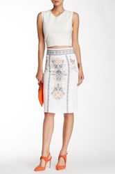 Champagne And Strawberry Embroidered Pencil Skirt Beige