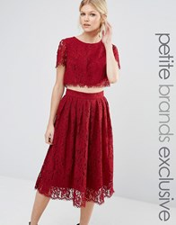 True Decadence Petite 2 In 1 Allover Lace Full Prom Skater Dress Berry Red