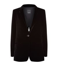 Pinko Velvet Split Back Blazer Female Black