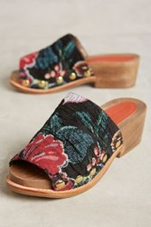 Anthropologie Rachel Comey Dover Clogs Floral Brocade