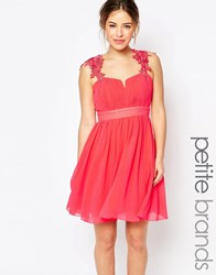 Little Mistress Petite Skater Dress With Lace Detail Coral