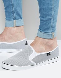Rock And Religion Slip On Plimsolls Grey