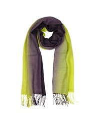 Mila Schon Cashmere And Wool Fringed Stole Lime Purple