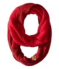 The North Face Hudson Scarf Biking Red Cerise Pink Scarves