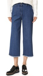 Won Hundred Melanie Pants Blue Raw
